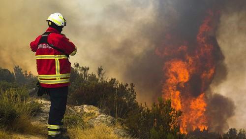 Incendio-Pedrogão[1].jpg