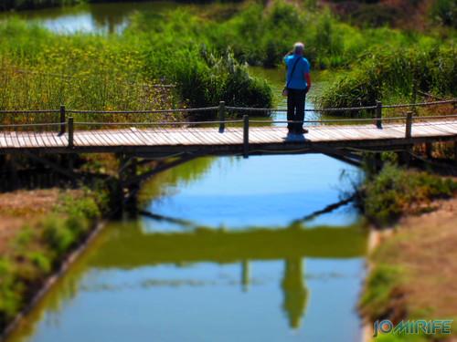 Reflexo de saudade em Canal do Oásis de praia da Figueira da Foz [en] Reflection of nostalgia in Oasis Beach water canal in Figueira da Foz Portugal