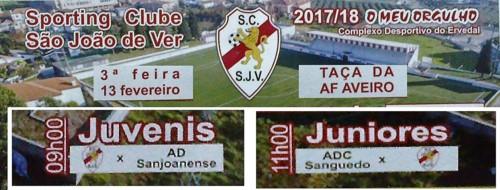 Cartaz Taça AF Aveiro