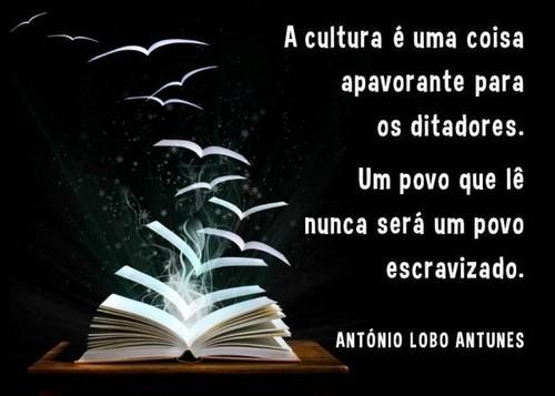 cultura2.jpg