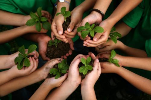 kids-planting-hands-800_orig.jpg