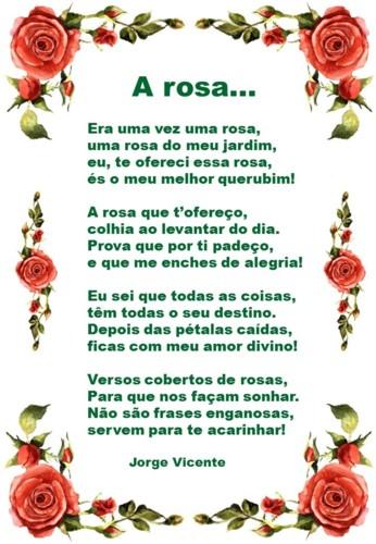 A rosa...jpg