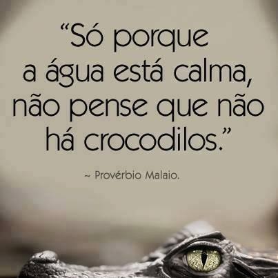 Só porque a água está calma, não pense que não há crocodilos