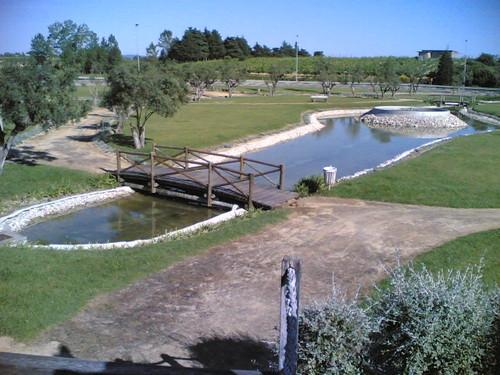 Cantanhede: Lago dos patos