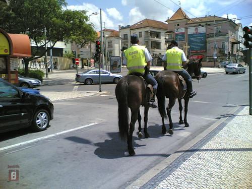 GNR a fazer patrulha de cavalo