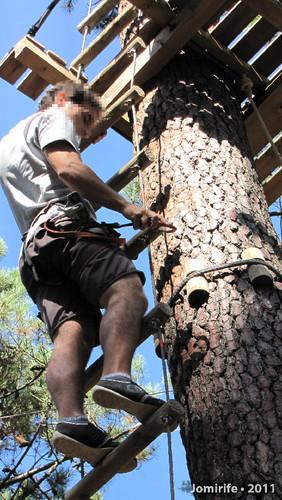 Parque Aventura: Nas escadas da árvore