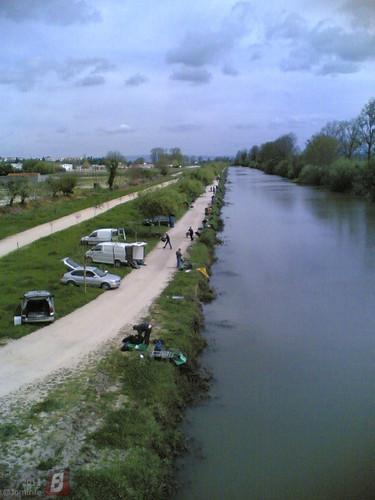 Dezenas de pescadores no rio em Montemor-o-velho