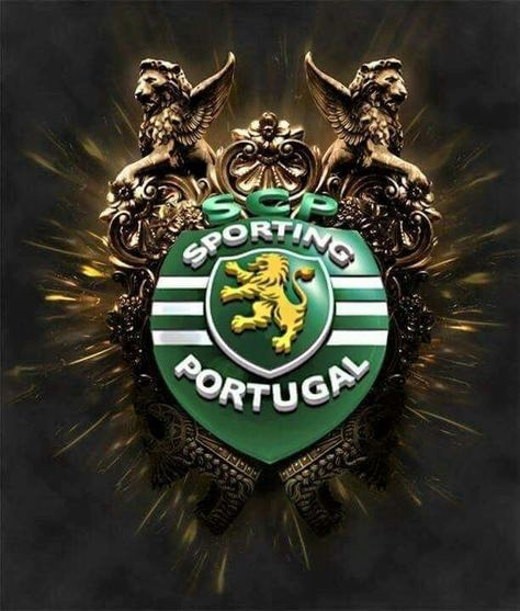 c7cdd355bcff61909e850c67a5536f37--portugal-soccer-