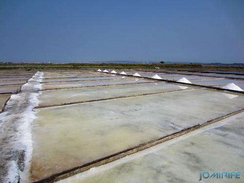 Salinas da Figueira da Foz (14) Campos de sal [en] Salt fields of Figueira da Foz in Portugal