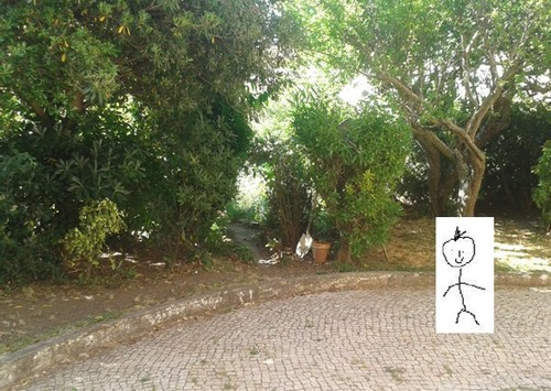 jardim2.jpg