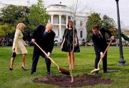 trump-macron-tree-before-after-split-1-rt-ap-jt-18