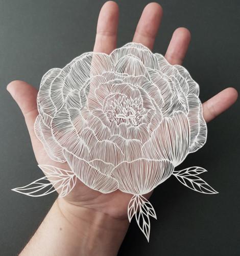 paper-cutting-artist-pippa-dyrlaga-designboom-7.jp
