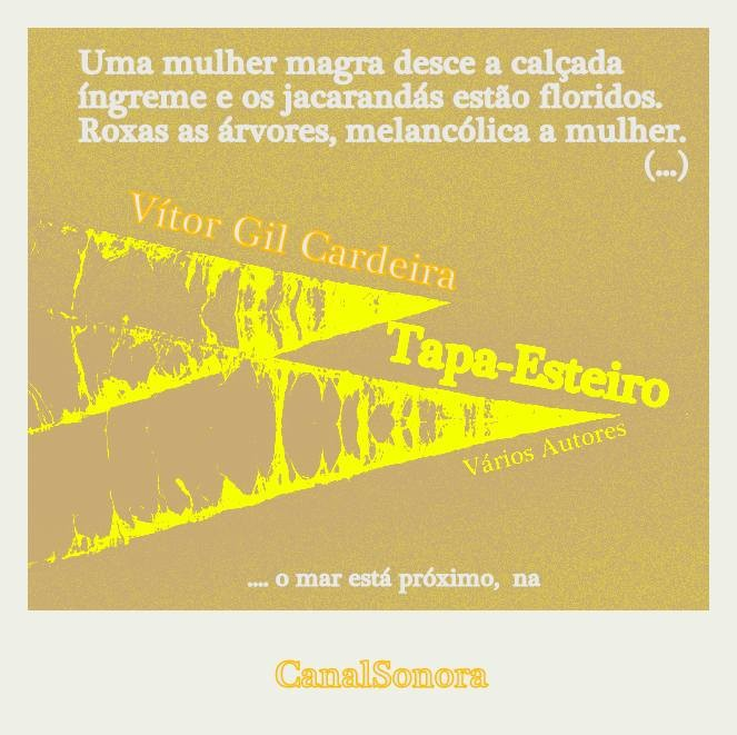 12 - Vitor Gil Cardeira.jpg