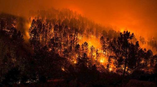 portugal incendios.jpg