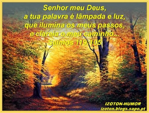 SALMOS 119.jpg