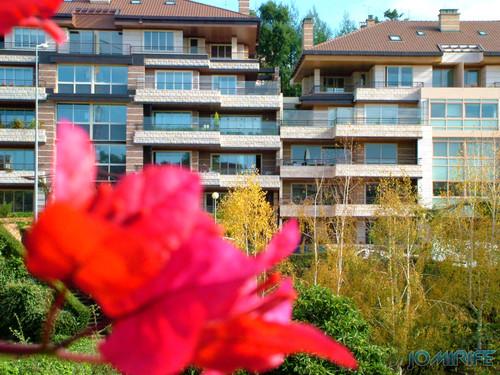 Apartamentos da Quinta de São Jerónimo, Coimbra [en] Apartments in the Quinta de San Jerónimo, Coimbra