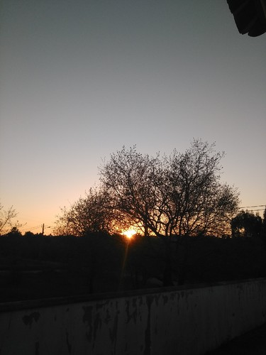 Por do sol.jpg
