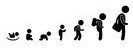 pictograma evolução.jpg