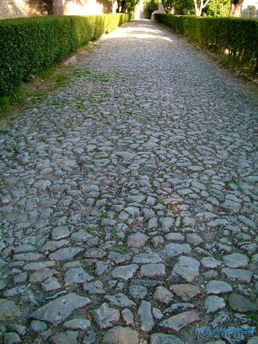 Castelo de Montemor-o-Velho - Caminho empedrado (2) [en] Castle of Montemor-o-Velho - Paved path