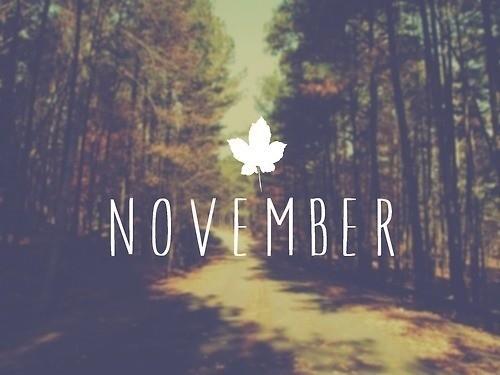 Novembro.jpg