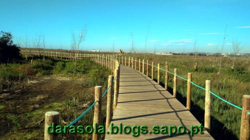 Passadico_Esmoriz_23.jpg
