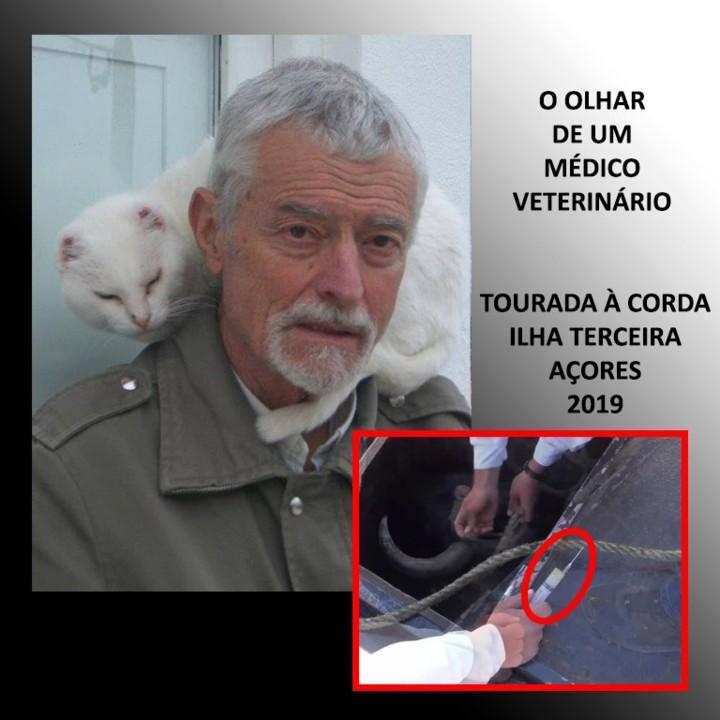 O OLHAR DE VASCO REIS.jpg