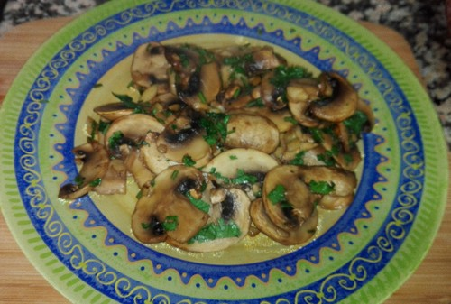 cogumelos (2).jpeg