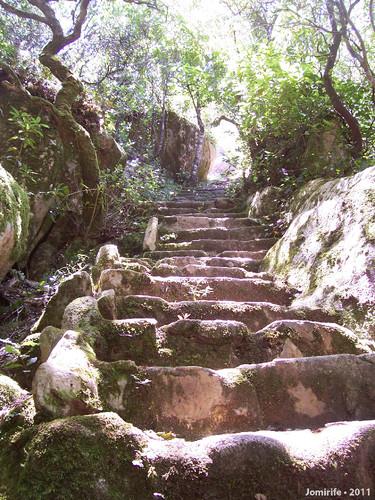 Jardins do Palácio da Pena - Escadas