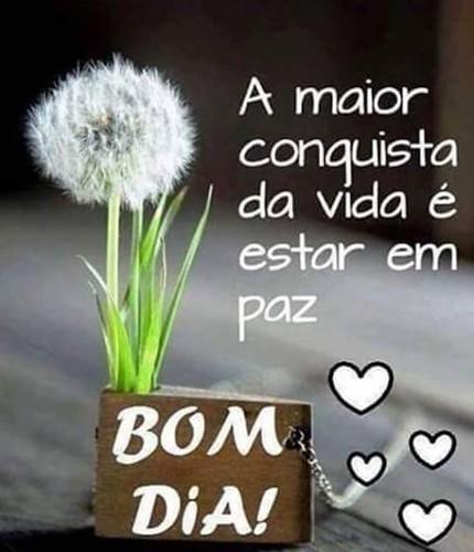 FB_IMG_1482066481563.jpg