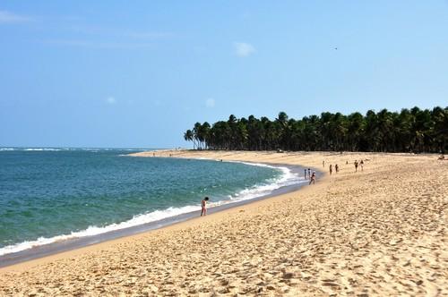 Praia do Gunga (Fonte: Wikimedia)