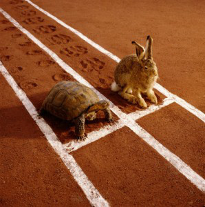 slow-and-steady-wins-the-race-298x300.jpg