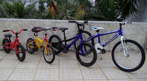 bikes_evo.jpg