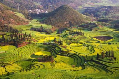 Yunnan_Internet.jpg