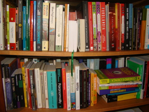 Estante livros papagaio