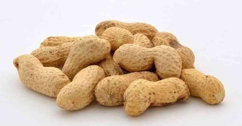 amendoins-1024x535.jpg
