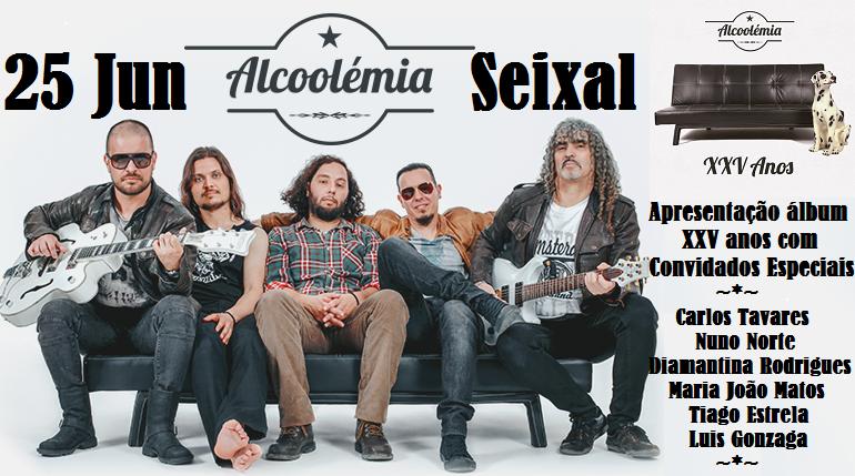 Alcoolémia 2017 Seixal.png