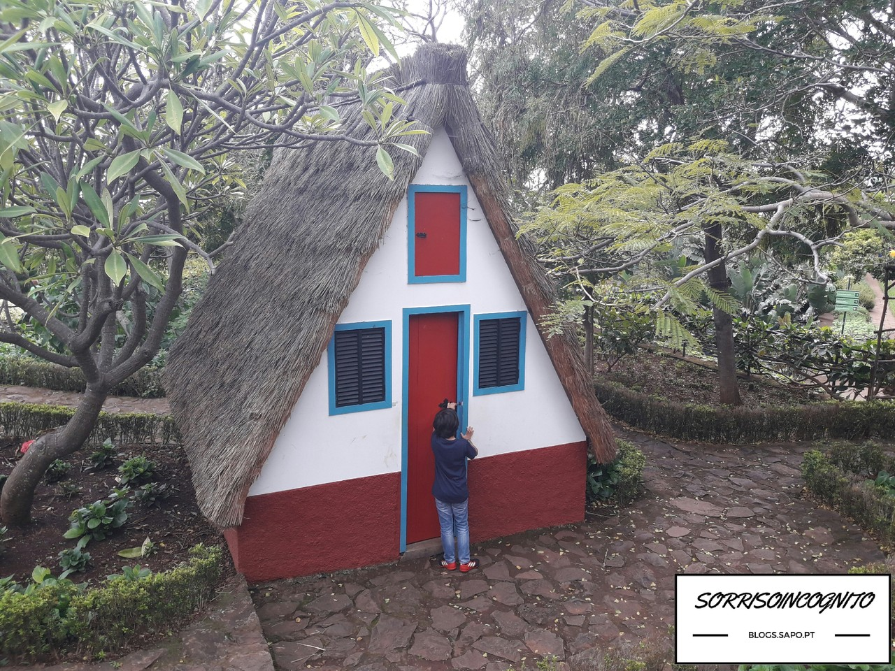 Jardim botânico Madeira