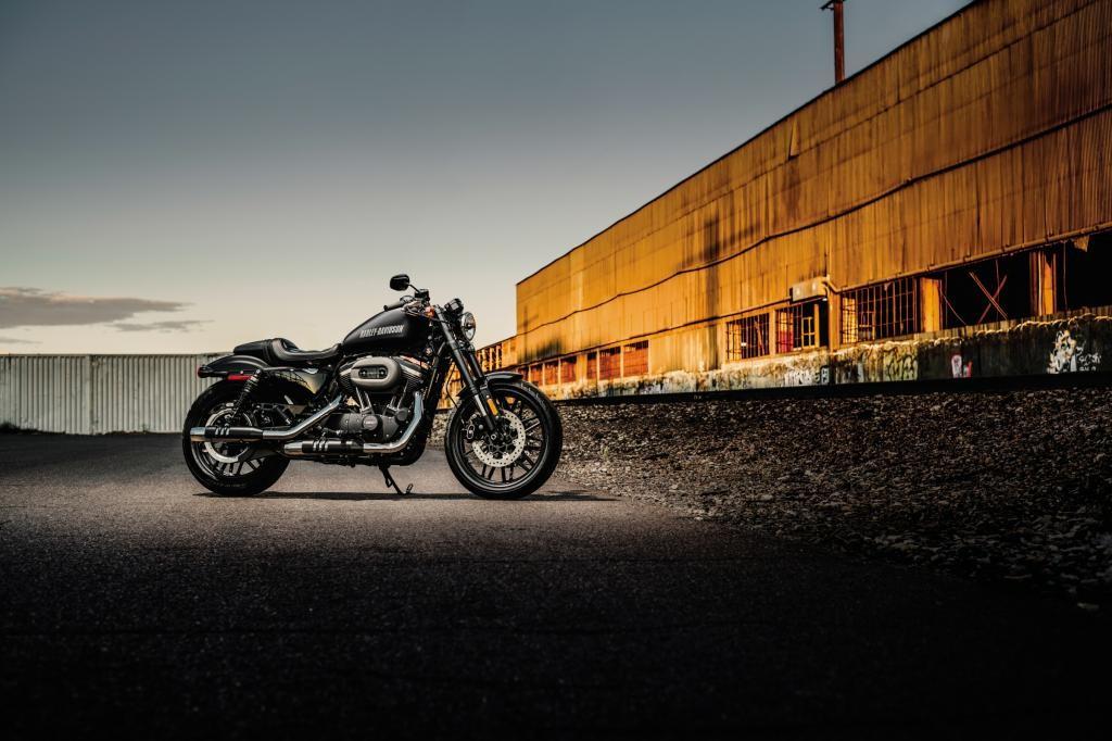 Harley Roadster Like A Man.jpg