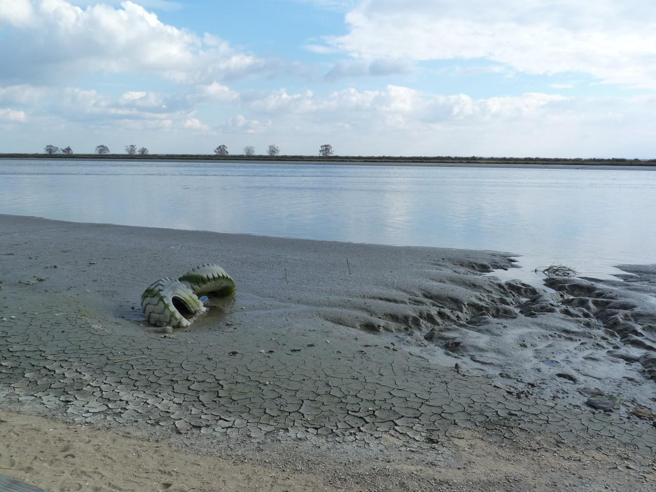 Parque Linear Ribeirinho do Estuário do Tejo (12)