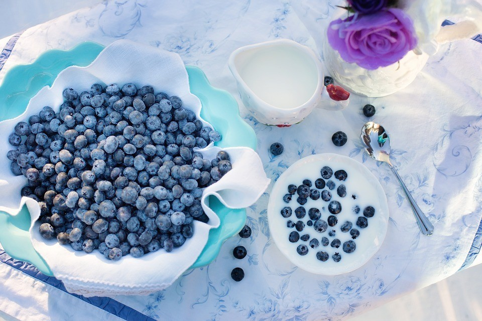 blueberries-1576409_960_720.jpg