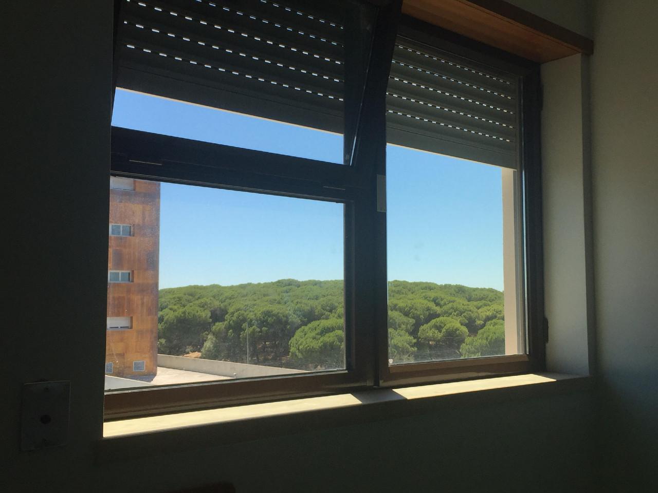 Janela Hospita São Francisco Xavier LiAM.jpg