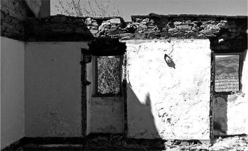 Neil ANTES (3).jpg