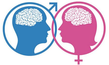 cerebros-diferentes.png