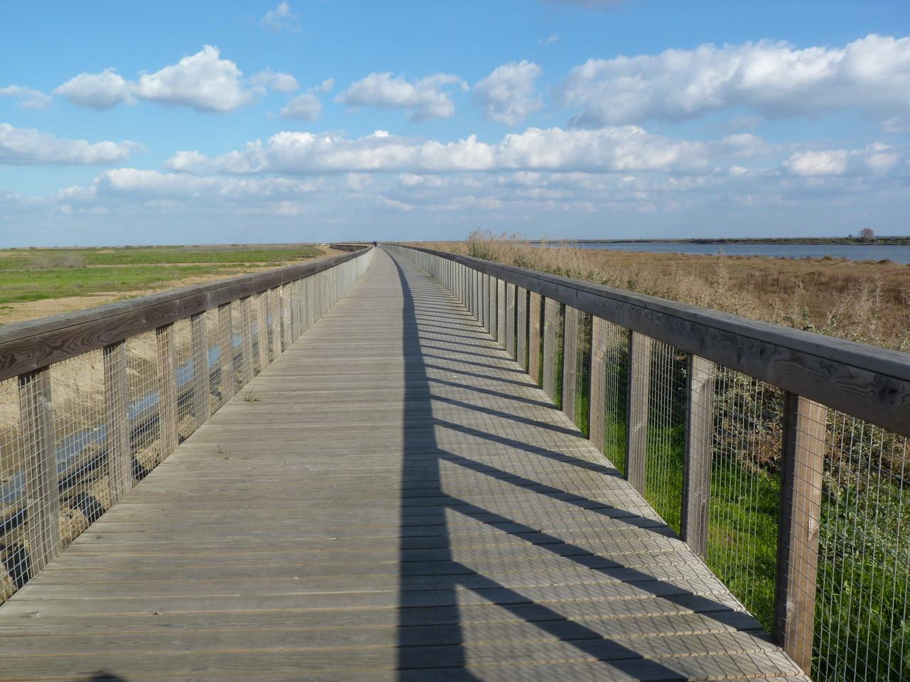 Parque Linear Ribeirinho do Estuário do Tejo (20)