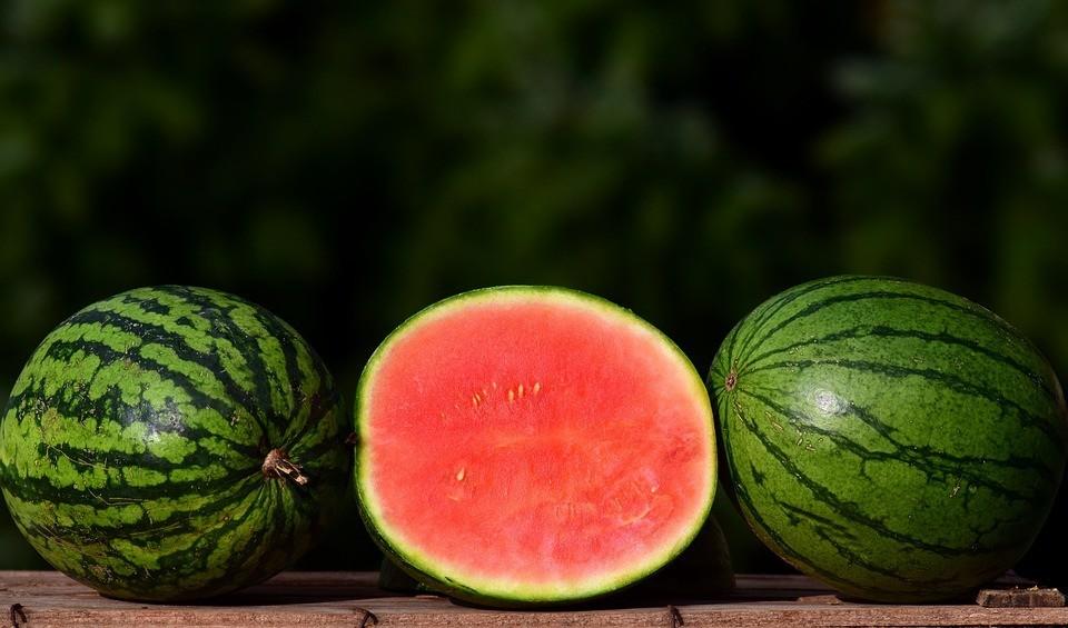 melon-2691415_960_720.jpg