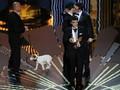 Óscares 2012