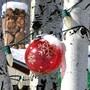 Passatempo Natal 2013