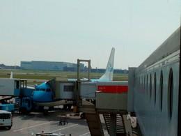 avião da KLM em Amesterdão.jpg