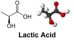 Lactic_Acid.jpg