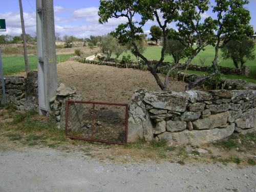 Pastoria